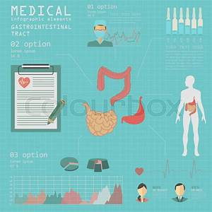 Medical And Healthcare Infographic  Gastrointestinal Tract