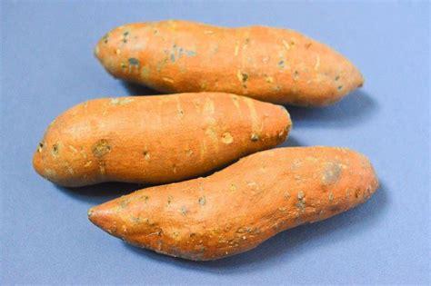 cuisiner des patates douces 17 meilleures idées à propos de plante de patate douce sur