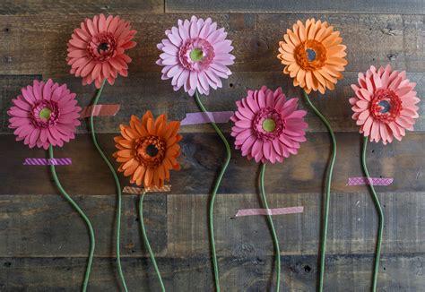paper gerbera daisies     paper