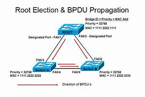 How Spanning Tree Protocol Works  U2013 Easiest Guide Available   U2013 The Dnetworks