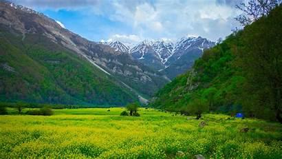 Landscape Mountains Flowers Meadow 4k Mountain Nature