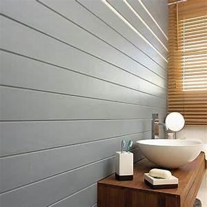 Peinture Pour Lambris : choisir et savoir utiliser la peinture galerie photos de ~ Melissatoandfro.com Idées de Décoration