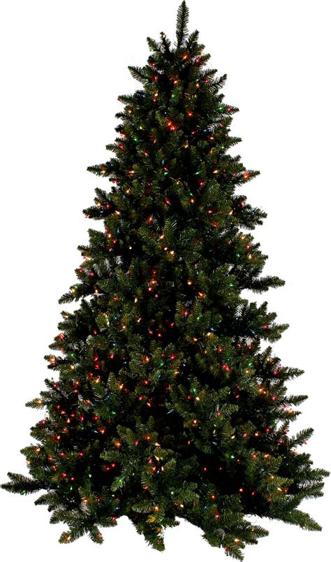 best hypoallergenic christmas trees gift ideas for swimming pool