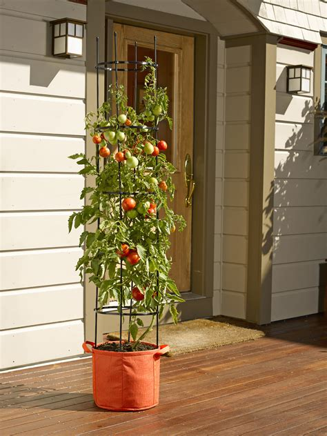 best tomato grow bags tomato grow bag with 5 integrated cage gardeners com