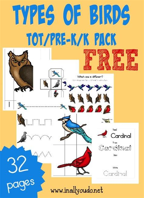 free birds tot amp prek k pack different types different 231 | 00c8d9b04f6af25ae0ebe8eebe2d65e2