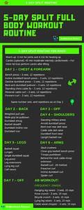 5 Day Split Full Body Workout Routine