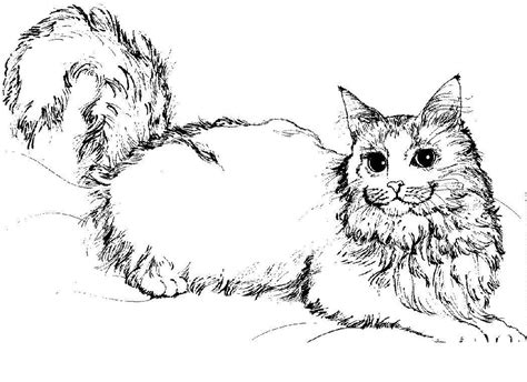 Free Printable Cat Coloring Pages For Kids   Adult