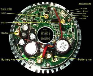 Golden Motor Wiring Diagrams