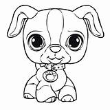 Pound Puppies Coloring Pages Em sketch template