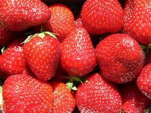 Erdbeeren Pflegen Schneiden : erdbeeren schneiden selphiescorner rezept erdbeer apfel ~ Lizthompson.info Haus und Dekorationen