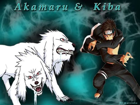Kiba Anime Wallpaper - kiba wallpapers wallpaper cave