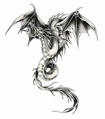 Dragon Silver Graphic Desicomments