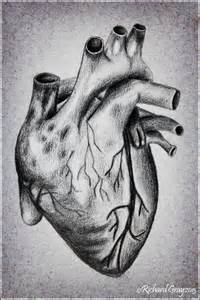 Real Human Heart Drawing