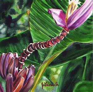 About Jenny Floravita's tropical oil and watercolor paintings