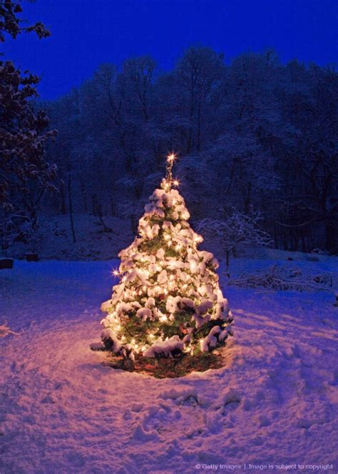 snowy christmas images  pinterest winter