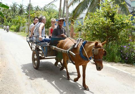 horse cai lao vehicle vehicles villages visiting take delta mekong tour saigon mingle nature places cart bn xe sdisco