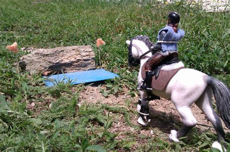 concours photo termine domaine equestre de bois le comte