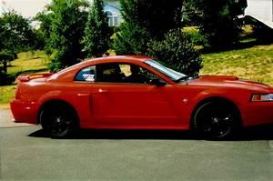 smokin99stang 1999 Ford Mustang Specs, Photos, Modification Info at CarDomain