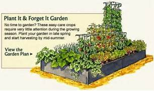 Garden Design And Planning Design Forget It Gardening Vegetable Garden Planner Layout Design Plans