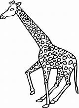 Giraffe Coloring Pages Giraffes Animals Printable Supercoloring Bestcoloringpagesforkids Galloping sketch template