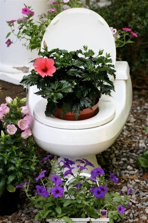 flowers   toilet pickchur