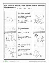 HD wallpapers drawing conclusions worksheets high school wallpaper ...