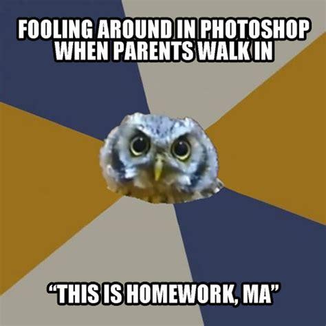 Art School Owl Meme - homework art student owl know your meme