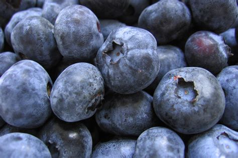 what color are blueberries blueberry