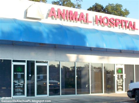 top 28 pet stores in gainesville florida gainesville