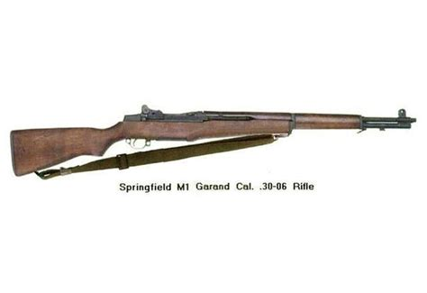 What is the best 3006 semiautomatic rifle for the money