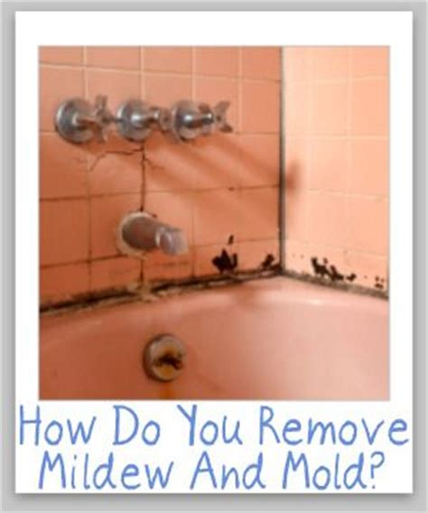 tips for cleaning removing mildew mold from