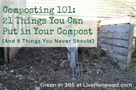 What Are Some Things You Can Put On A Resume by Composting 101 21 Things You Can Put In Your Compost
