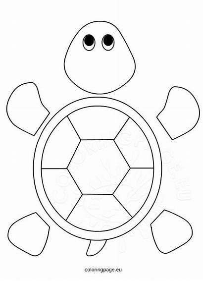 Turtle Preschool Template Coloring Craft Crafts Sea