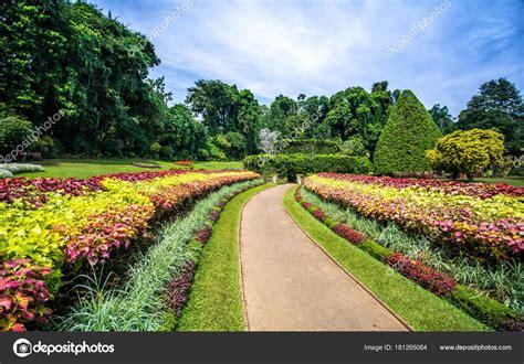 Botanischer Garten Garden Preise by Botanische Garten Peradeniya Kandy Oder Royal