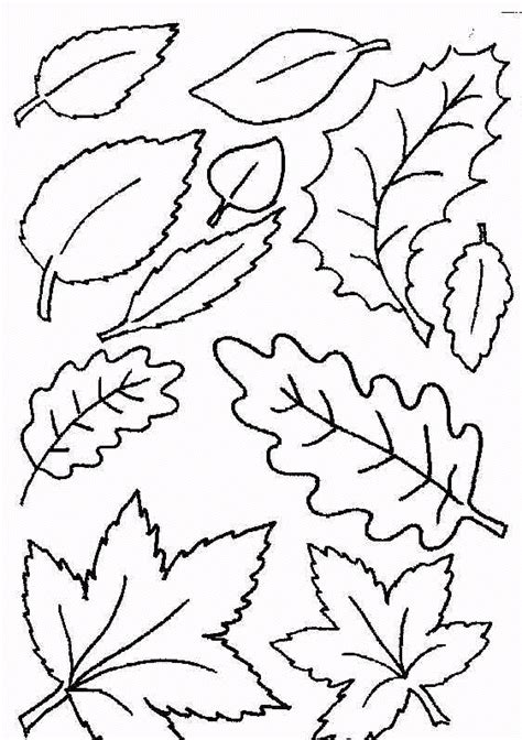 leaf coloring pages coloringpagescom