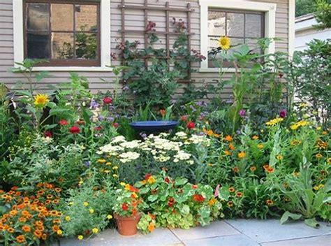 Medicinal Herb Garden Design Photograph