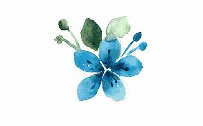Watercolor Flower Clipart Teal Flowers Transparent States