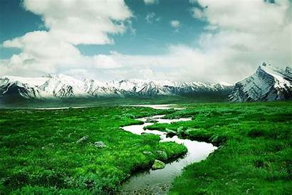 Palestine Save Nature Scene Greenery