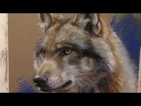 images  animal portrait drawing painting