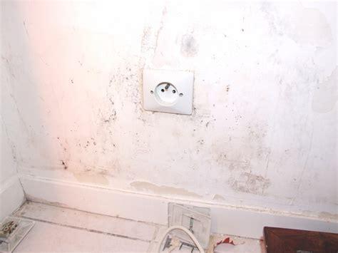remontee capillaire mur interieur dscf1695 jpg