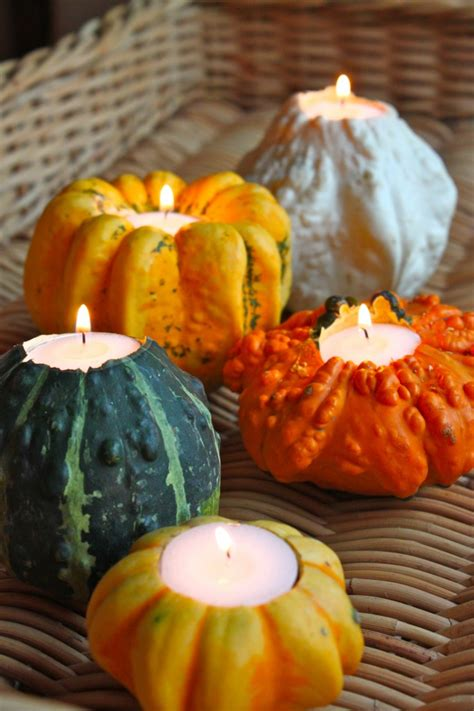decorating gourds fall gourds and squashes what they are and how to use