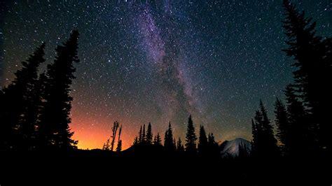 Wallpaper Trees Landscape Forest Night Galaxy