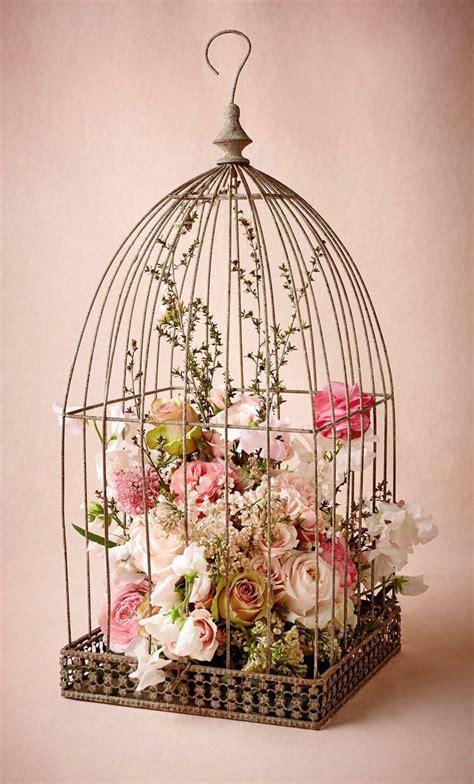 Bird Home Decor by Best 25 Bird Cage Decoration Ideas On