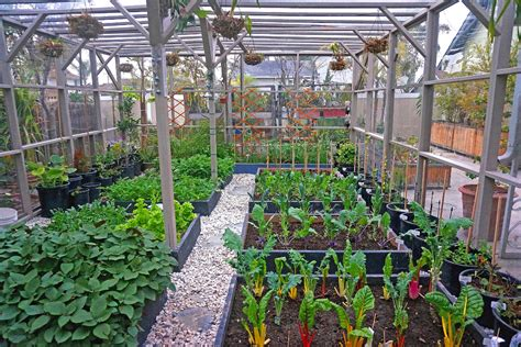 Vegetable Garden Layout Ideas You'll Want To Take Away