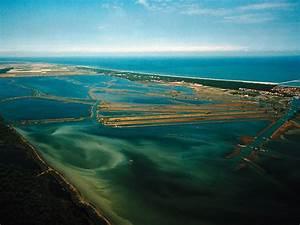 Delta G Berechnen : ausfl ge mit fahrrad und kanu nach dem po delta park feriendorf campingplatz marina romea ~ Themetempest.com Abrechnung