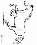 Coloring Horse Printable Running Horses Ausmalbilder Fohlen Stallion Sheet Sheets Colts Malvorlagen Pferd Colouring Konabeun Dirt Bike Raisingourkids Blogx Awesome sketch template