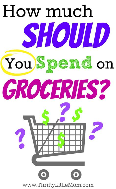 How Much Should You Spend On Groceries? » Thrifty Little Mom