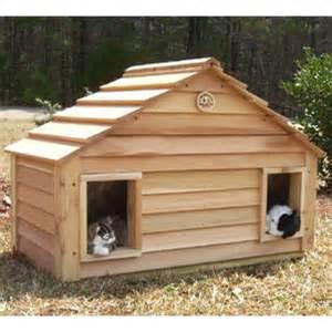 cat homes cedar duplex cat house