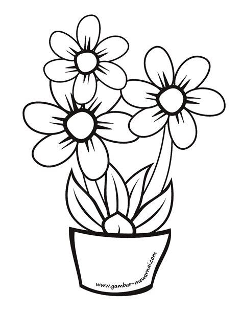 mewarnai gambar bunga melati