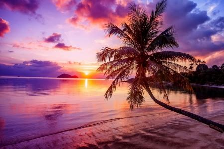 tropical sunset sunsets nature background wallpapers